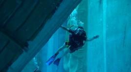 Entdecke Wassersport – Tauchen