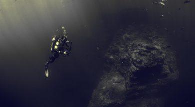 scuba-diver-569333_1920-forest